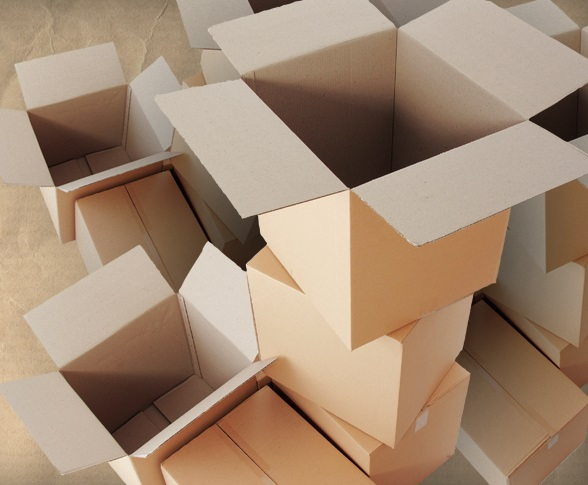How many cardboard boxes does Amazon ship each day?